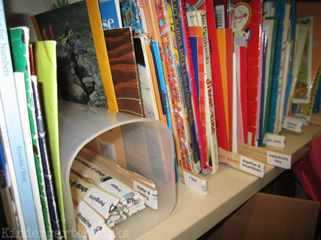 Classroom Library Organization Made Simple - I love this way to use pain sticks to organize books standing up in my closet.