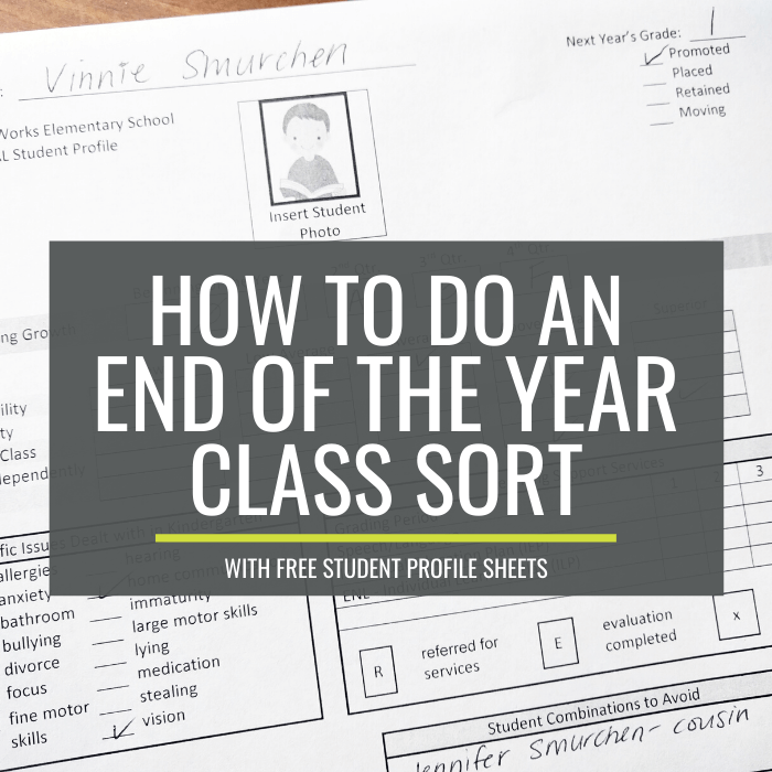 End of the Year Student Profile Sheet for Class Sorts