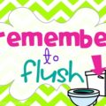 classroom routines for the restroom - wash and flush