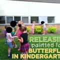 releasing painted lady butterflies in kindergarten