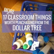 17 {more} Classroom Things Worth Purchasing From the Dollar Tree