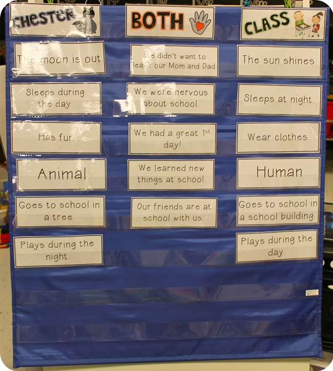 (27 Fresh Kissing Hand Freebies and Teaching Resources) Comparing Class vs. Chester Raccoon - KindergartenWorks.com