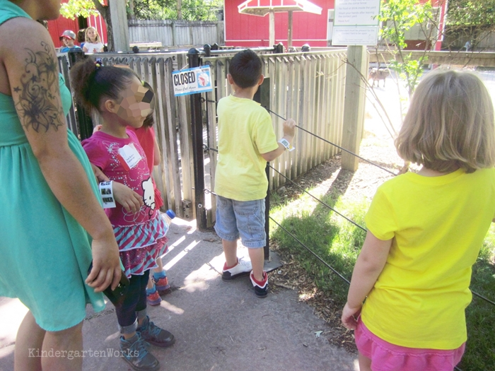 End of the Year Celebration Ideas for Kindergarten and graduation alternatives - take a field trip