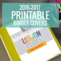 The cutest teacher planning binder covers - love the colors and simplicity