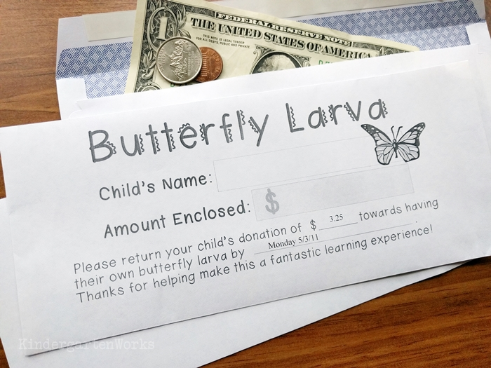 Money Collection Envelopes for Kindergarten