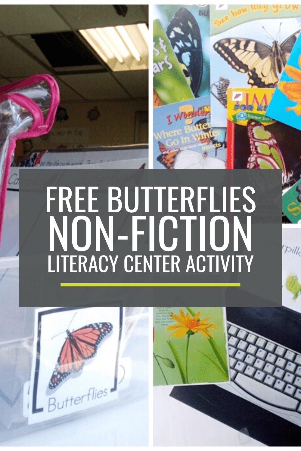 Butterflies Non-fiction Literacy Center Activity Set