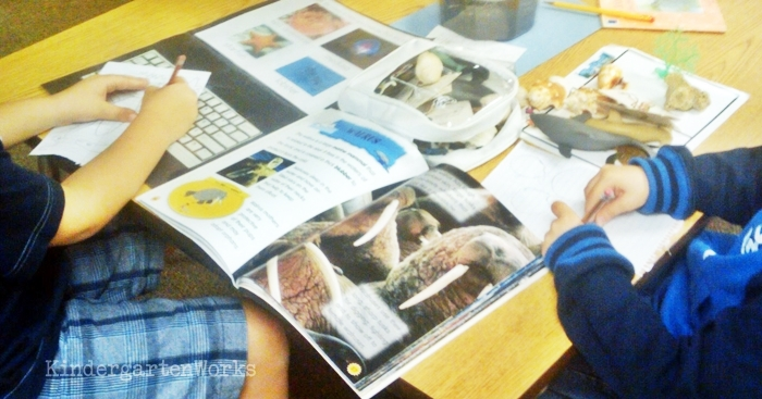 Kindergarten Non Fiction Literacy Center Activity - exploring ocean life