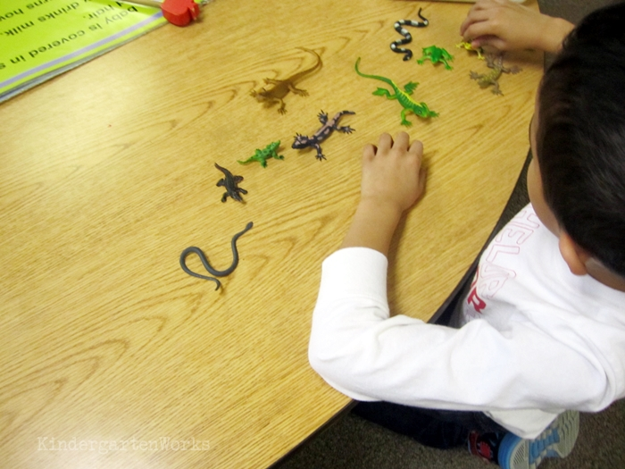 Kindergarten Non Fiction Literacy Center Activity - materials hook beginning readers
