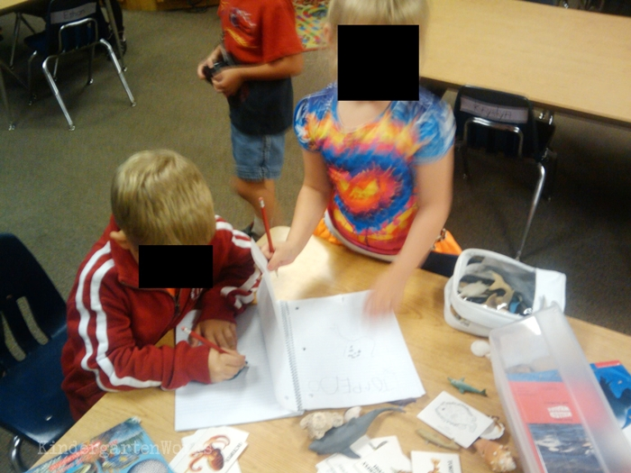 Kindergarten Non Fiction Literacy Center Activity - notebooks for writing