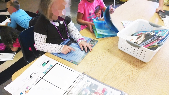Kindergarten Non Fiction Literacy Center Activity - reading