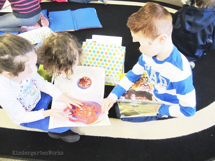 Kindergarten Non Fiction Literacy Center Activity - students explore features of non-fiction books