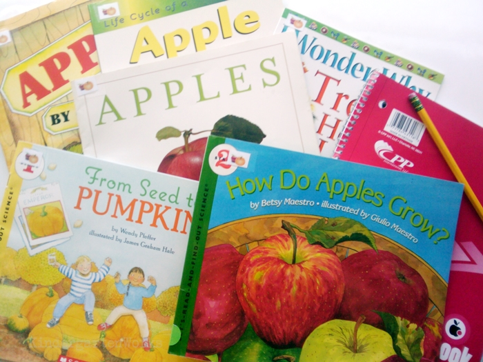 Non-Fiction Literacy Center for Kindergarten - apples and pumpkins books
