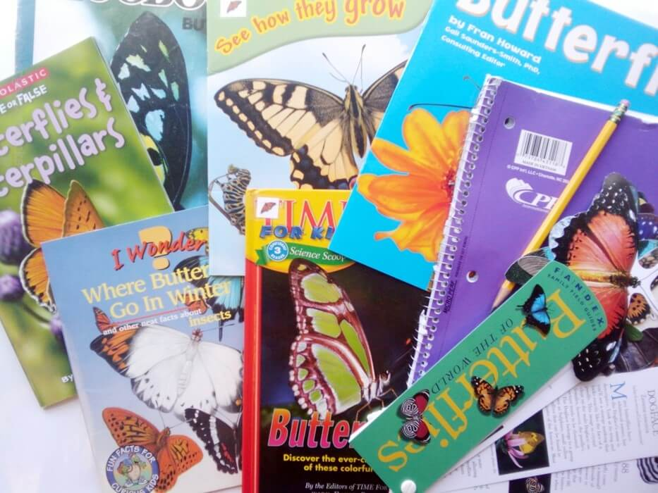 Non-Fiction Literacy Center for Kindergarten - butterfly books