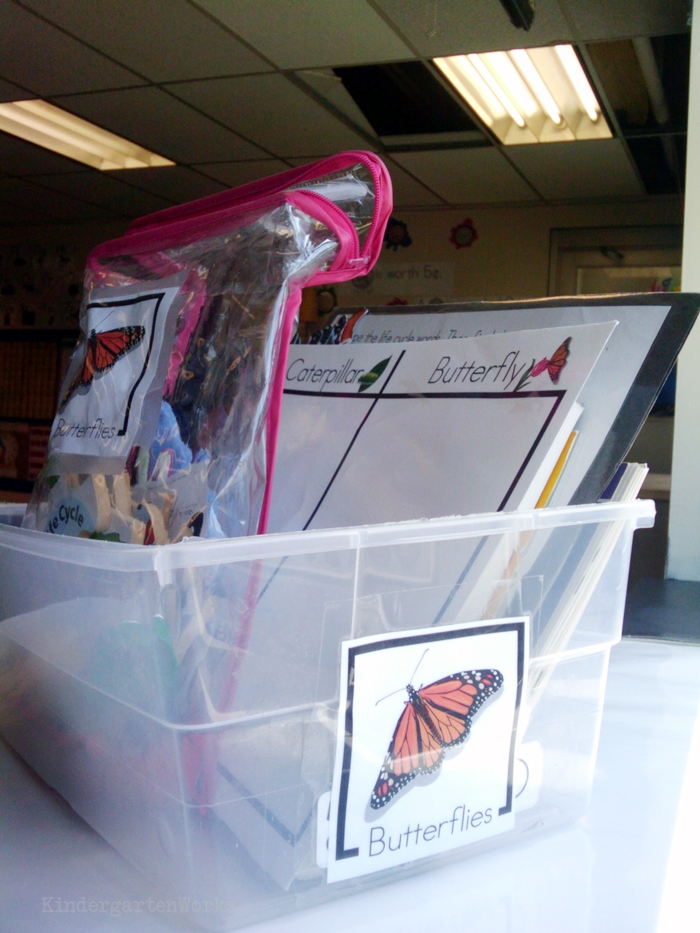 Non-Fiction Literacy Center for Kindergarten - butterfly theme