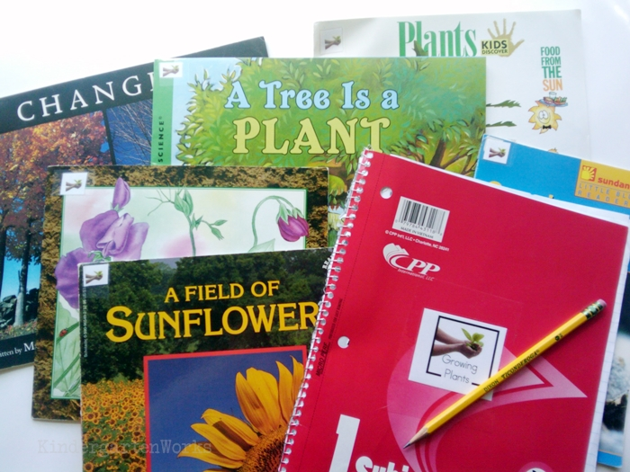 Non-Fiction Literacy Center for Kindergarten - growing plants books