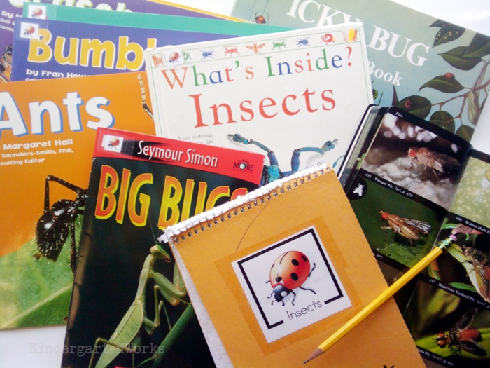 Non-Fiction Literacy Center for Kindergarten - insect books