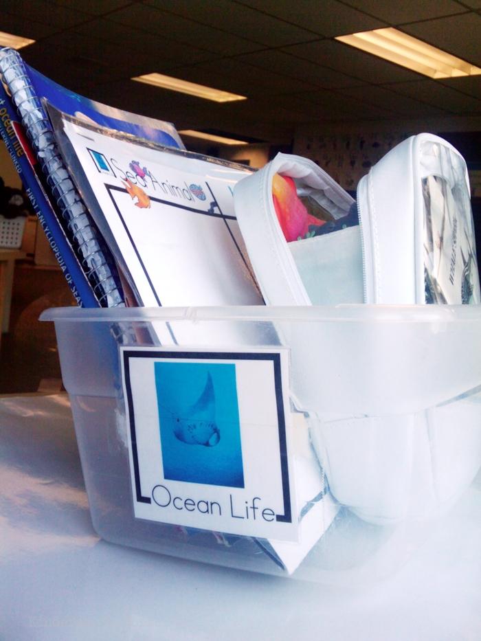 Non-Fiction Literacy Center for Kindergarten - ocean life theme
