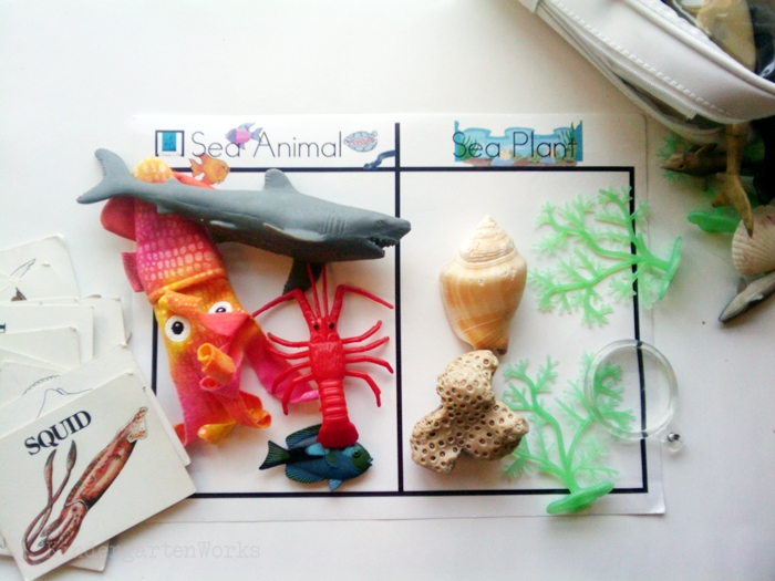 Non-Fiction Literacy Center for Kindergarten - sorting ocean objects
