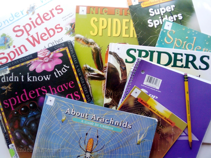 Non-Fiction Literacy Center for Kindergarten - spider books