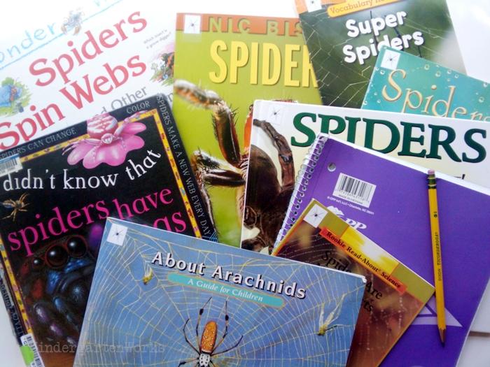 Non-Fiction Literacy Center for Kindergarten - spider books
