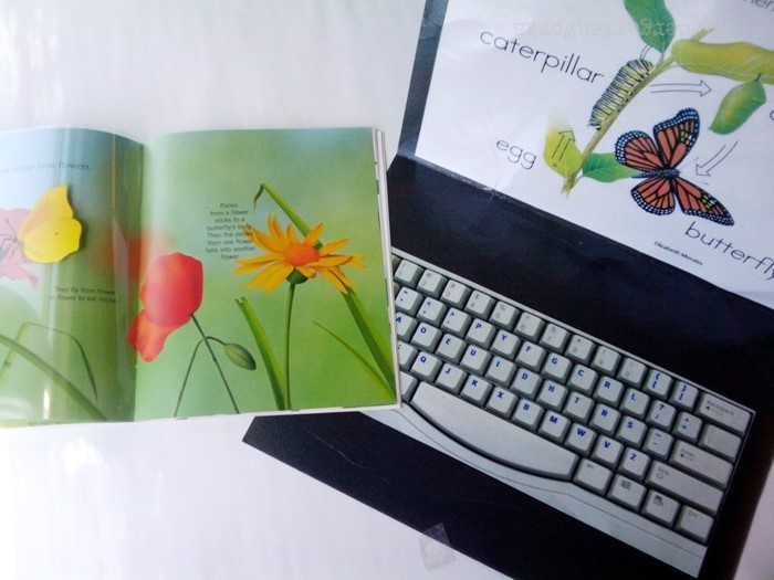 Non-Fiction Literacy Center for Kindergarten - typing butterfly words
