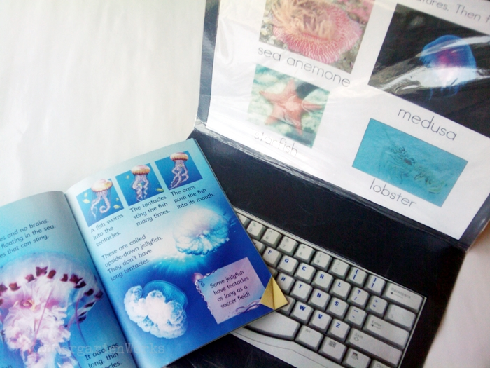 Non-Fiction Literacy Center for Kindergarten - typing ocean vocabulary words
