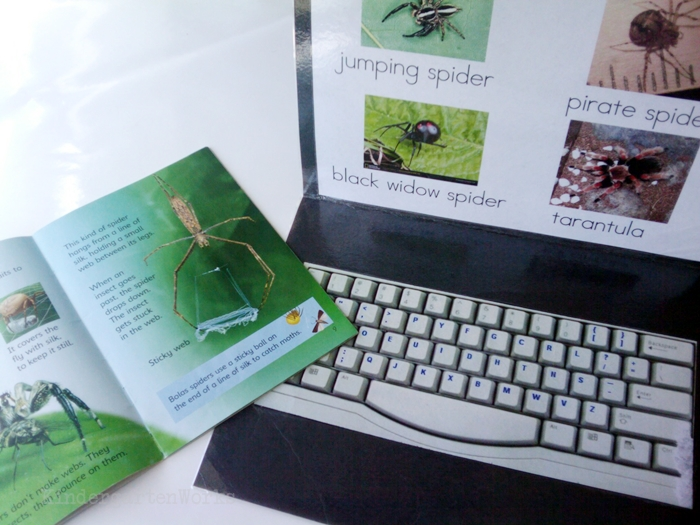 Non-Fiction Literacy Center for Kindergarten - typing spider vocabulary words literacy center activity