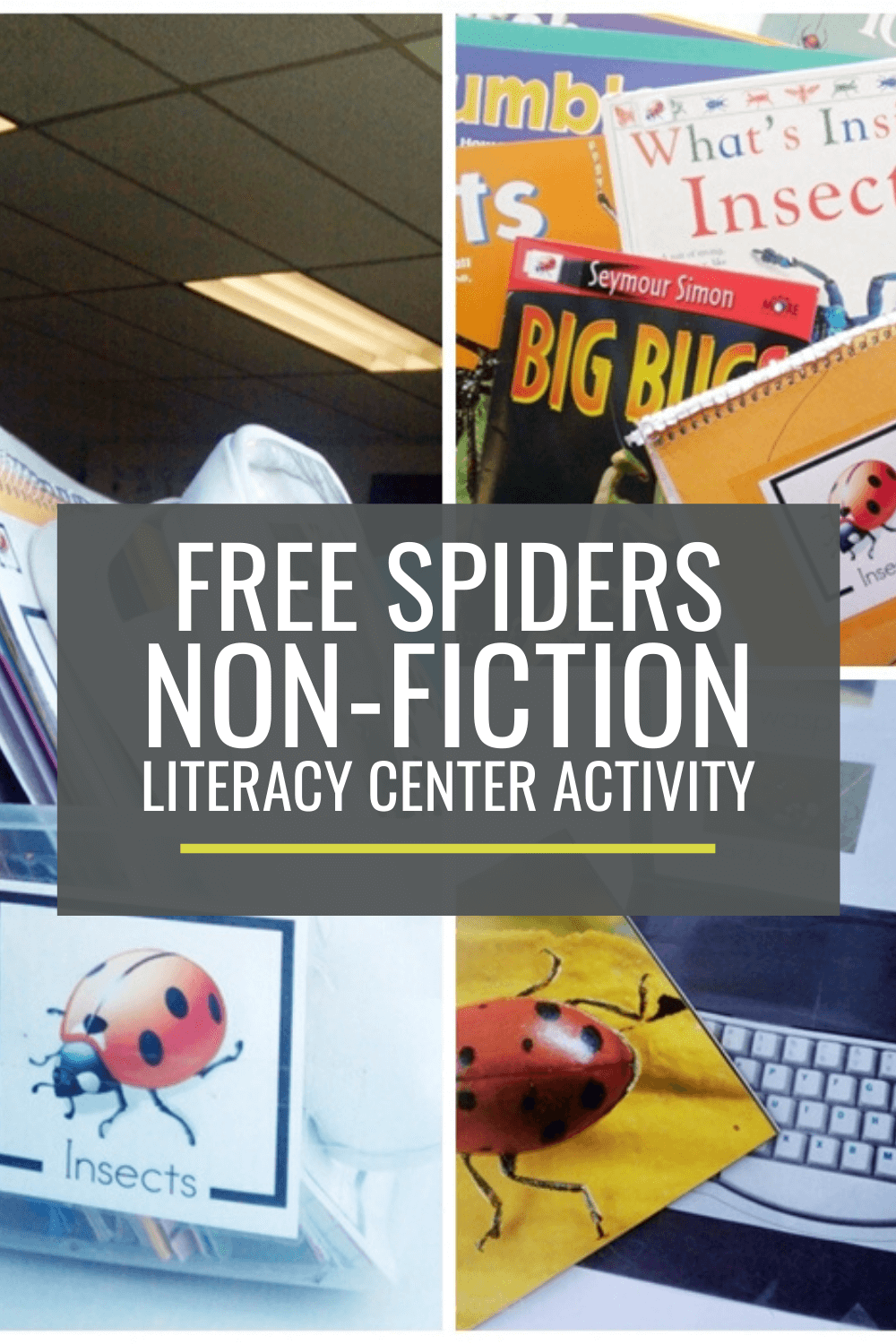 Spiders Non-fiction Literacy Center Activity Set
