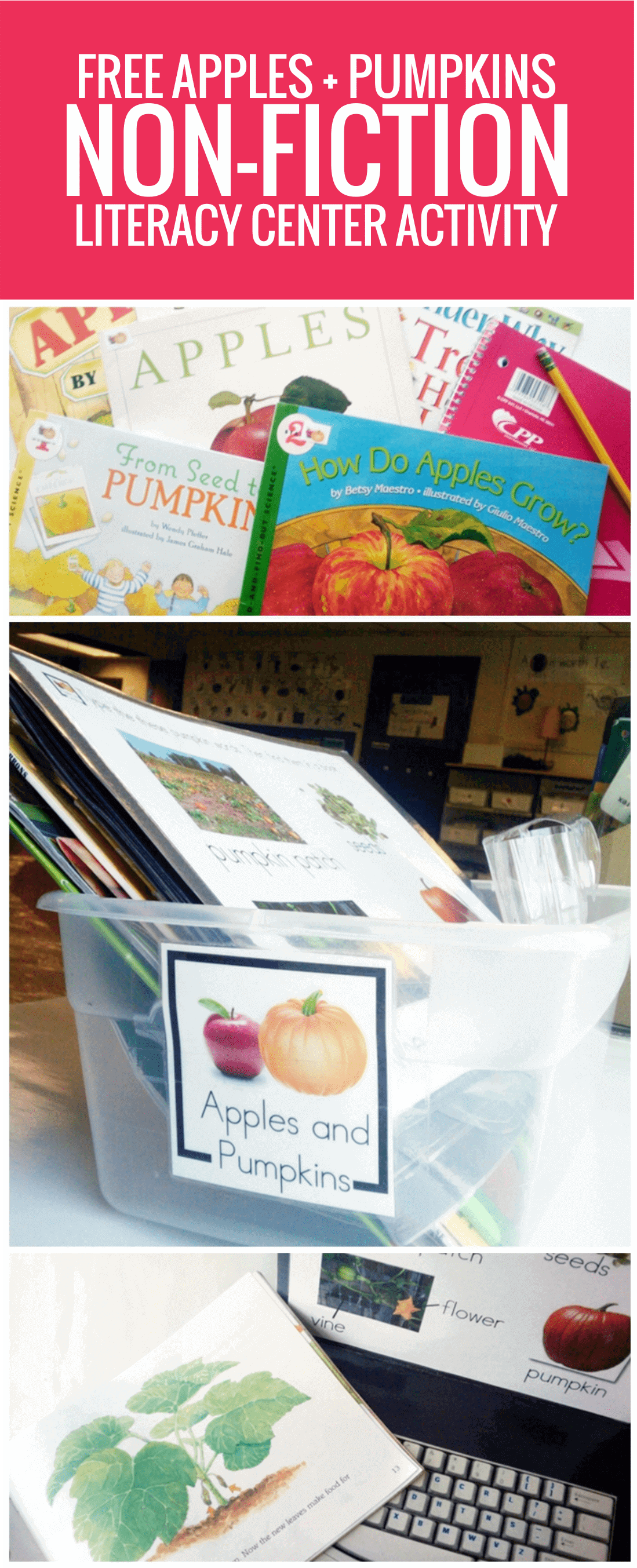 free Apples and Pumpkins Non-fiction Literacy Center Activity for kindergarten