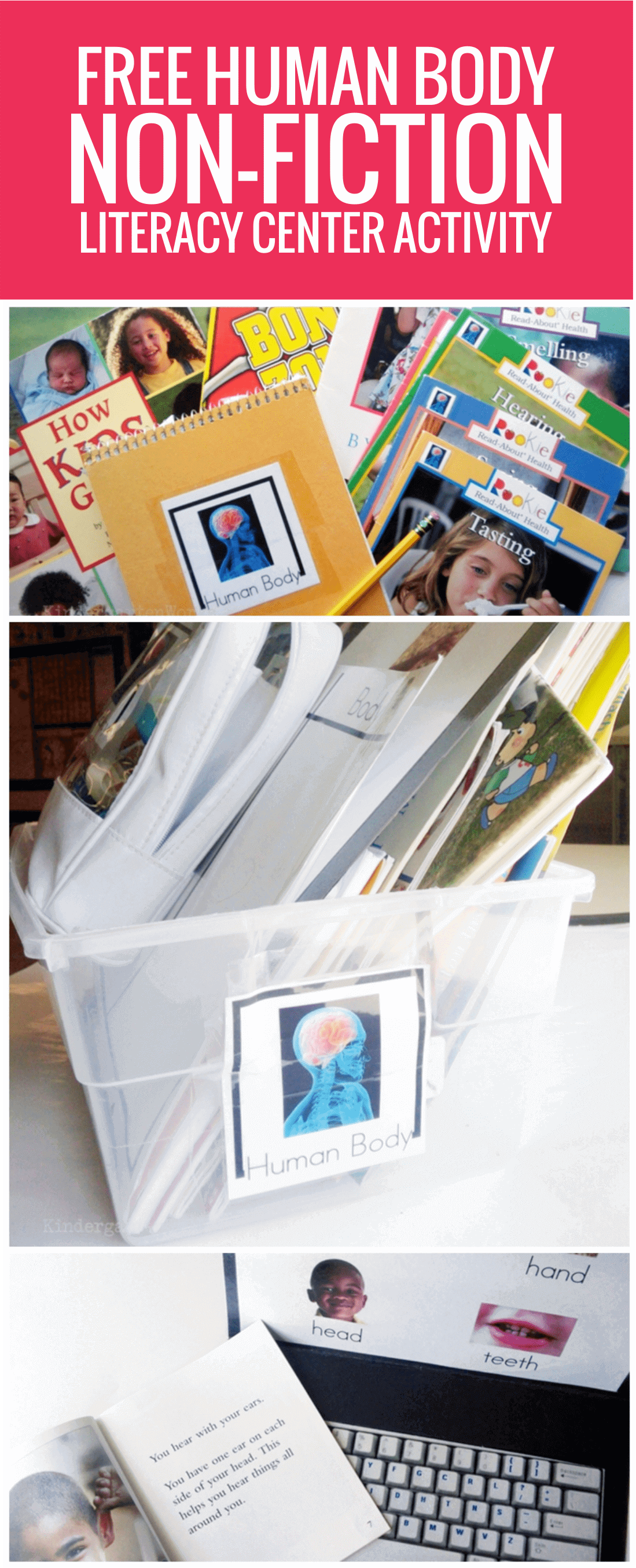 free Human Body Non-fiction Literacy Center Activity for kindergarten