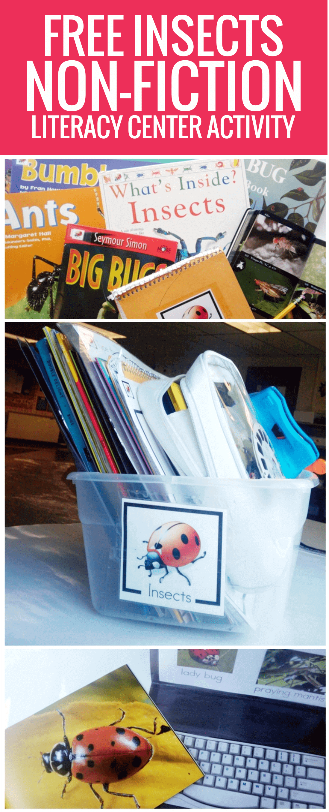 free Insects Non-fiction Literacy Center Activity for kindergarten