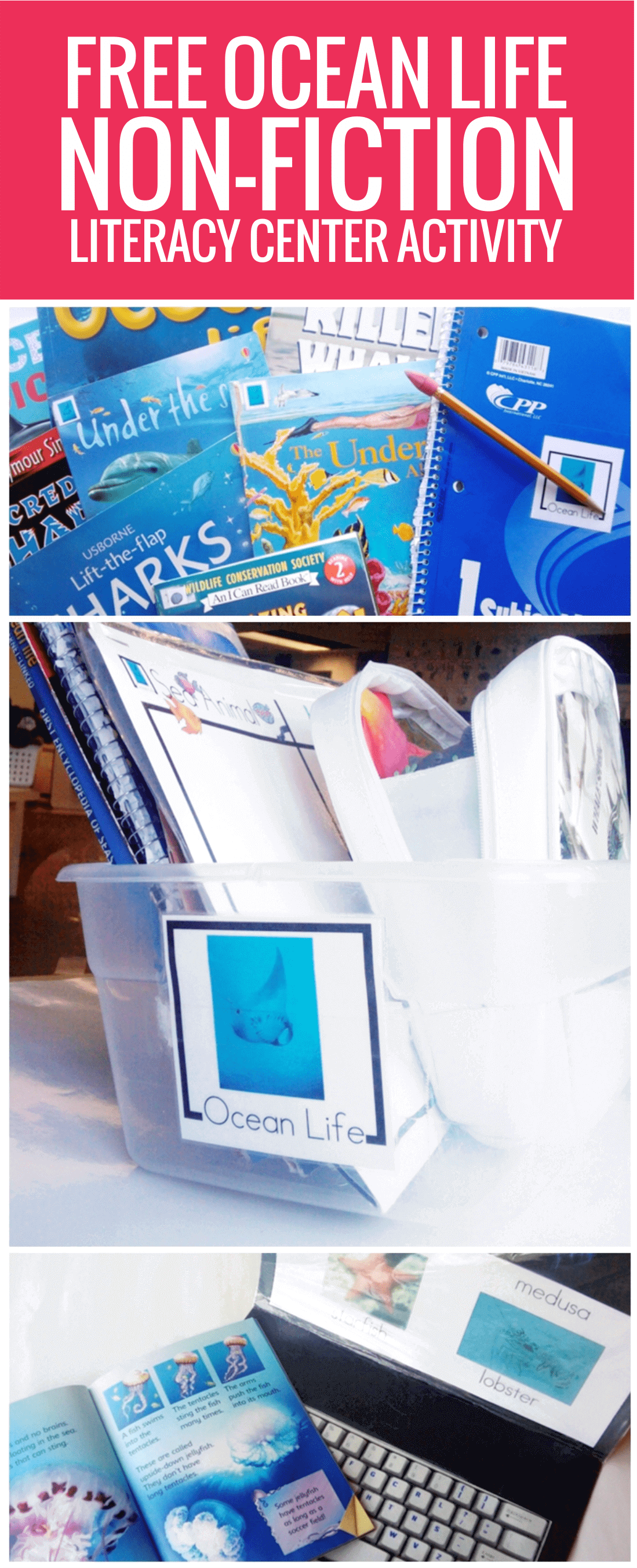 free Ocean Life Non-fiction Literacy Center Activity for kindergarten