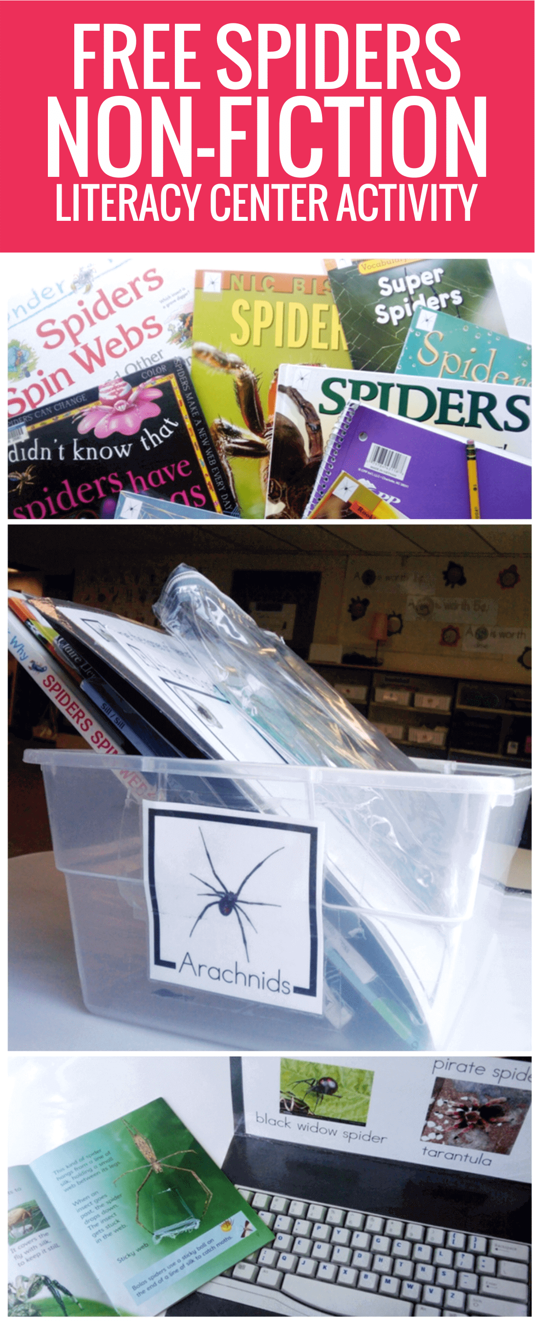 free Spiders Non-fiction Literacy Center Activity for kindergarten
