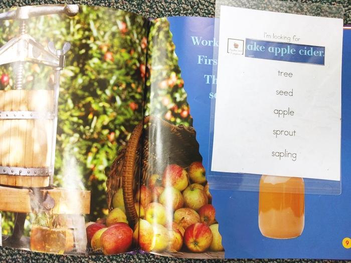 kindergarten literacy center activity - apples and pumpkins - non fiction theme