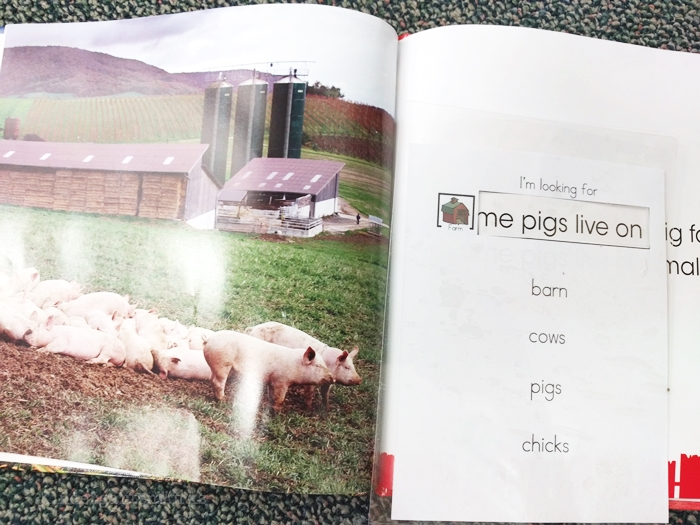 kindergarten literacy center activity - farm animals - non fiction theme