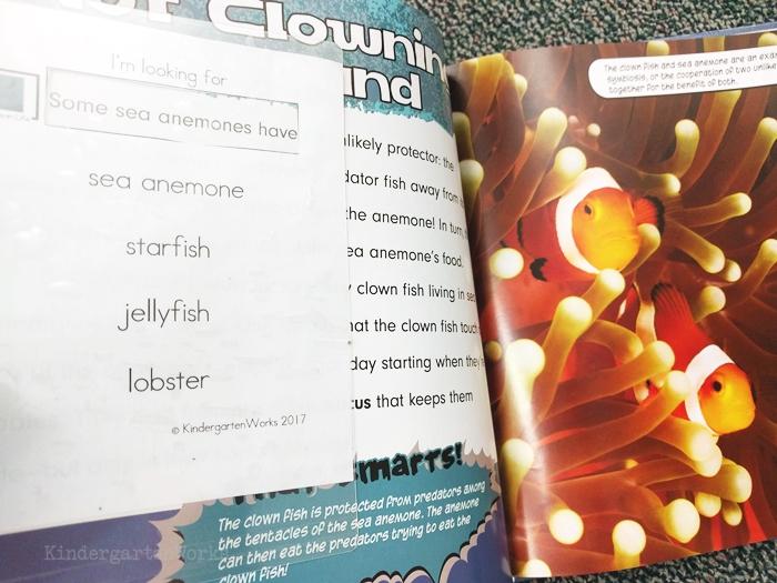 kindergarten literacy center activity - ocean life - non fiction theme