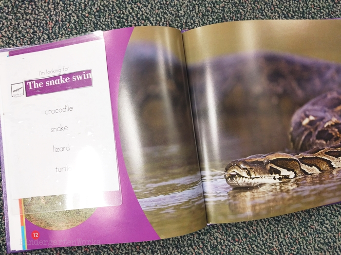 kindergarten literacy center activity - reptiles and amphibians - non fiction theme